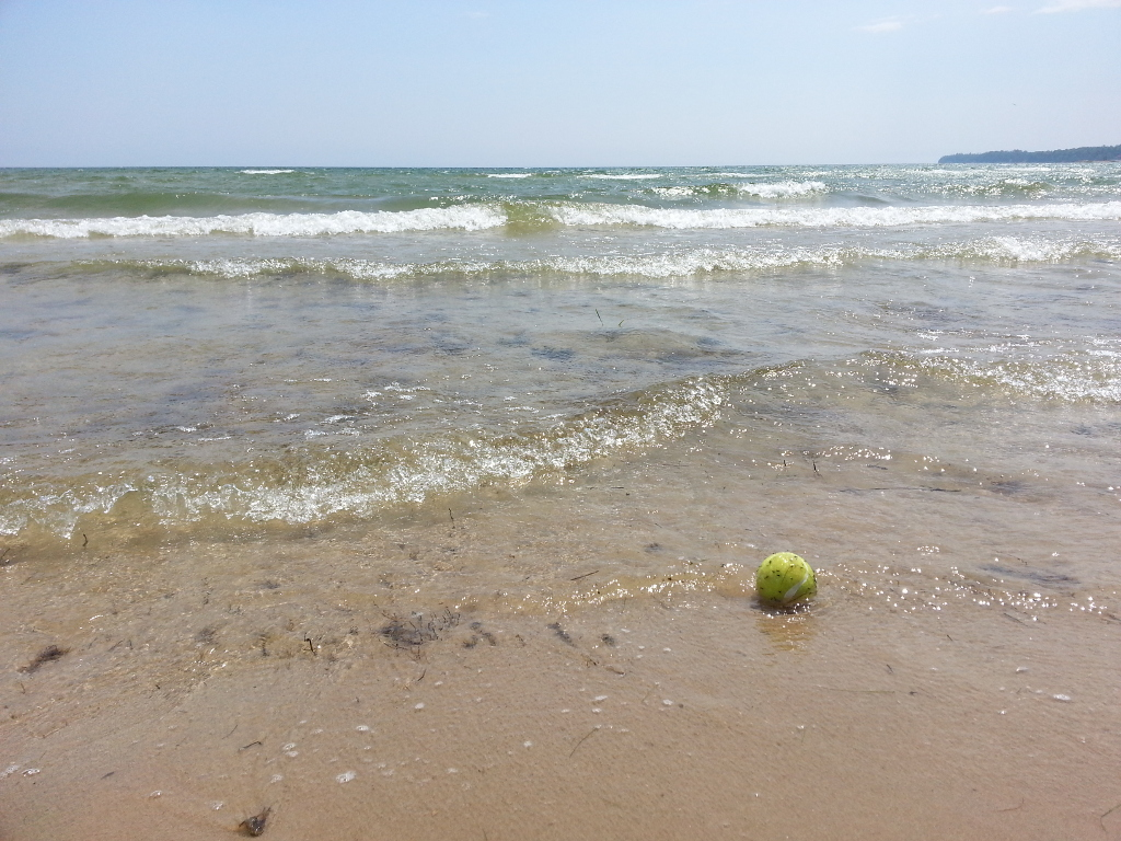 Tennis ball on the beach